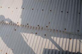 折板塗替えの施工前画像