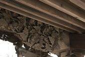 久留米市 外部木部塗装工事